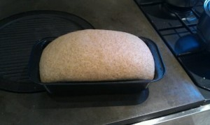 dough risen in the loaf tin before going in the oven