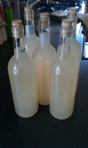 Ginger wine successfully bottled