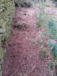 Great for clearing willowherb