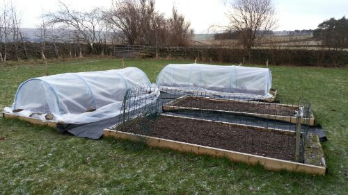 Polythene covers in place