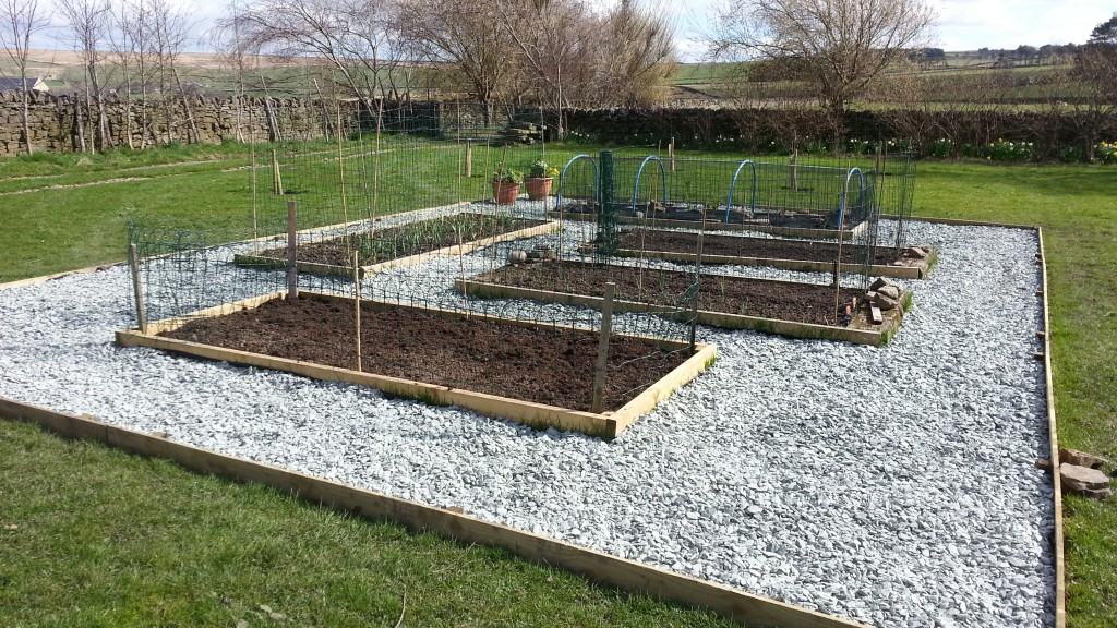 Raised beds - all done!