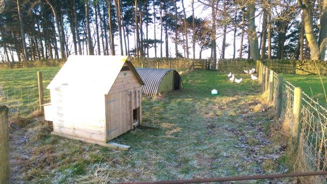 New accommodation