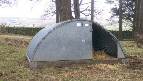 Pig accommodation checked and ready