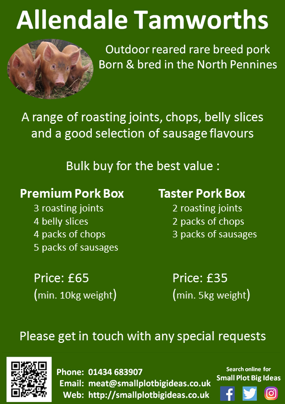 Rare breed Pork for sale
