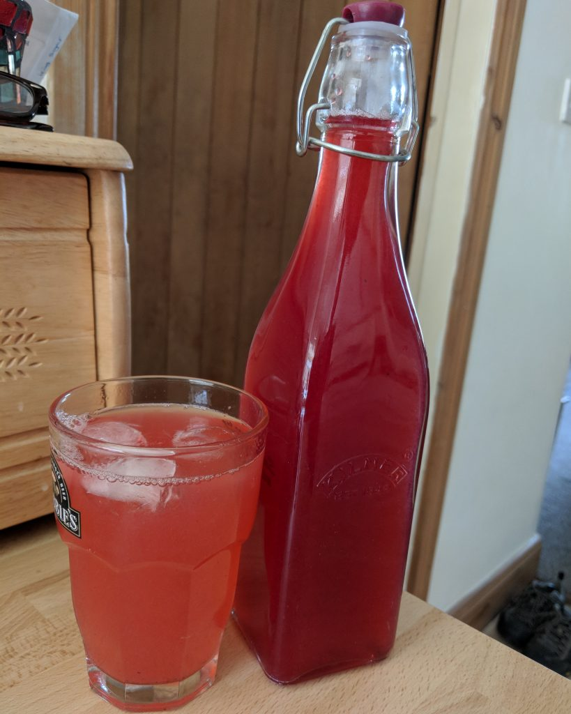 Surprisingly good redcurrant cordial